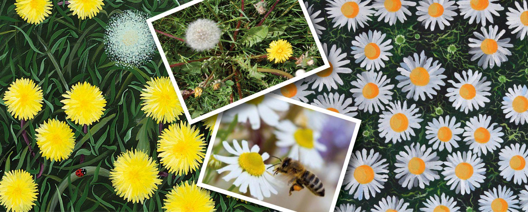 Billedserien: Vores natur